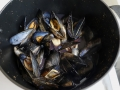 Steam mussles five minutes